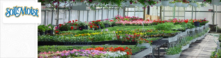 palettes of flowers inside a greenhouse